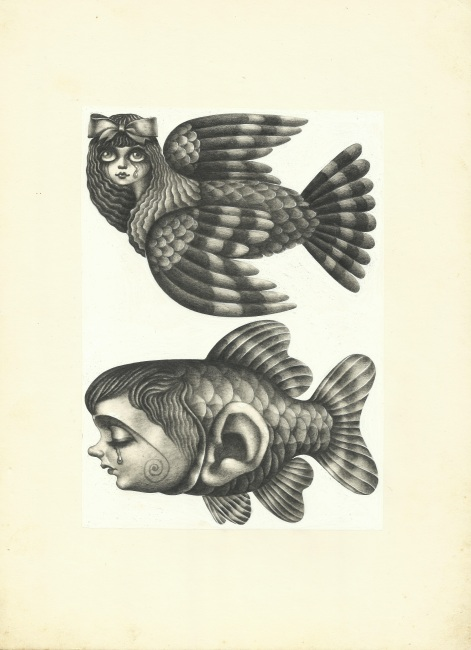 Aoi Fujimoto 15 - drawing - 1970 's - Two faces bird and fish