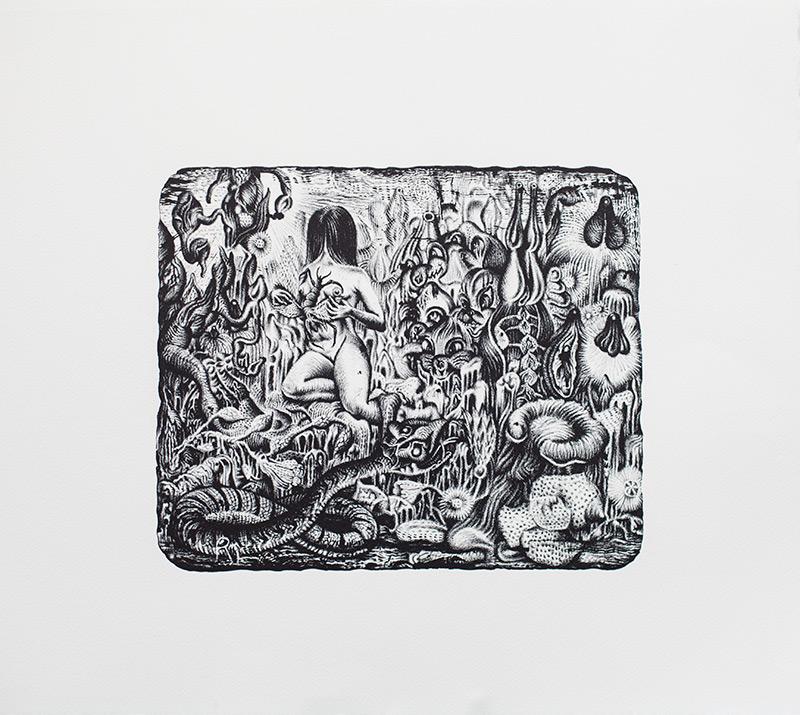 Stéphane Blanquet - lithographie - 2016 - Majesté Furtive